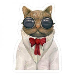 астро кот
