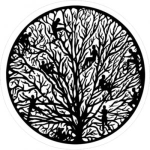 Старейшина дерева