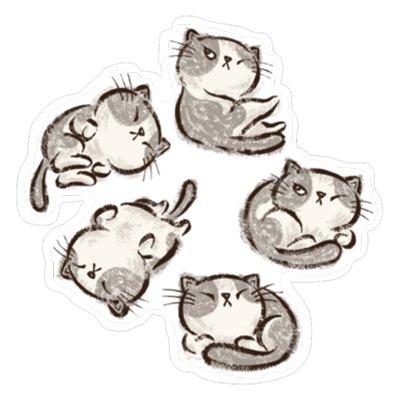 Наглые кошки отдыхают