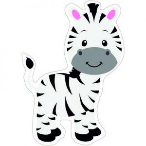 Зебра малыш